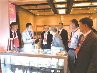 钾盐钾肥国际合作聚焦东南亚