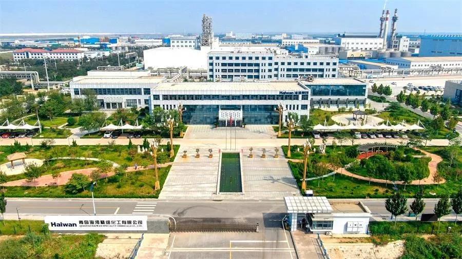 北部新河园区海湾精化办公楼.jpg